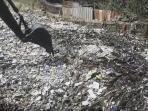 sampah-di-sungai-citepus_20160324_230405.jpg