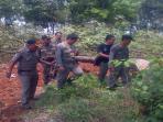 satpol-pp-purwakarta-tengah-tebang-pohon_20151103_171717.jpg