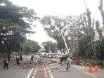 sejumlah-petugas-diskamtam-kota-bandung-sedang-merobohkan-pohon-di-jalan-diponegoro-bandung_20180122_145553.jpg