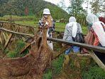 serunya-wisata-foto-dan-memberi-makan-rusa-di-ranca-upas-kesejukan-dan-kesegaran-alam.jpg