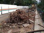 sisa-pohon-ditebang-underpass-sriwijaya.jpg