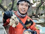 tim-rescue-damkar-kabupaten-bogor-tangkap-kobra.jpg