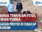 warga-temukan-fosil-hewan-purba-di-lahan-proyek-di-ciracap-sukabumi-2.jpg