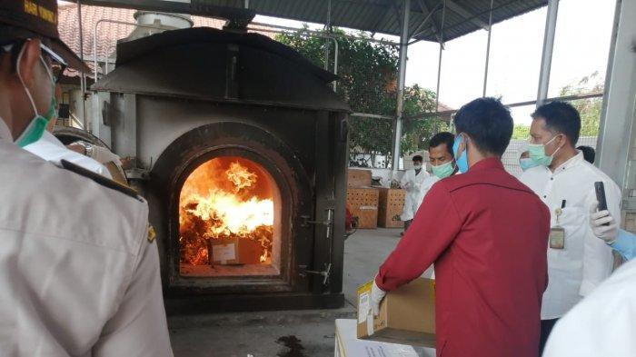 Mengandung Bakteri Ganas, 315 Bibit Kaktus Asal Italia Dimusnahkan di Bandara Soekarno-Hatta - 315-bibit-kaktus-dimusnahkan.jpg