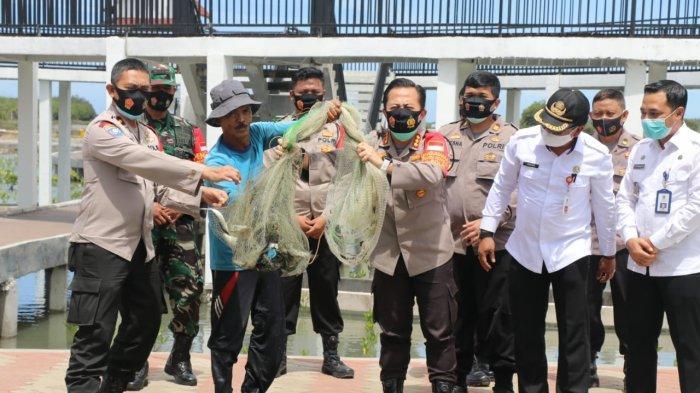 Kapolresta Tangerang Panen Ikan Bandeng Program Ketahanan Pangan di Mauk