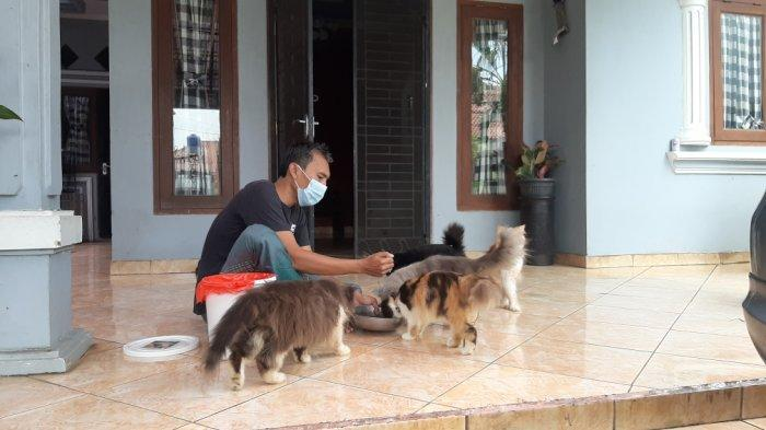 Afri, pemilik kitten yang akrab disapa Ucil saat ditemui di Jalan Kampung Kramat RT 03 RW 04, Cipayung, Jakarta Timur, Kamis (4/3/2021).