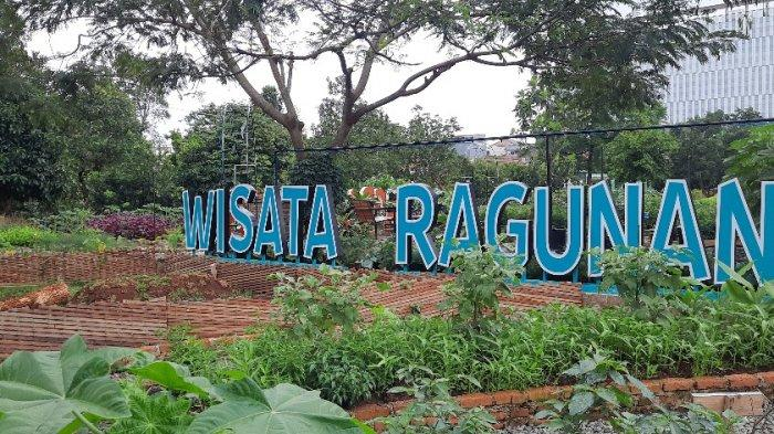 Warga Jakarta Bisa Jalan-jalan Sambil Belajar Berkebun di Agro Eduwisata Ragunan