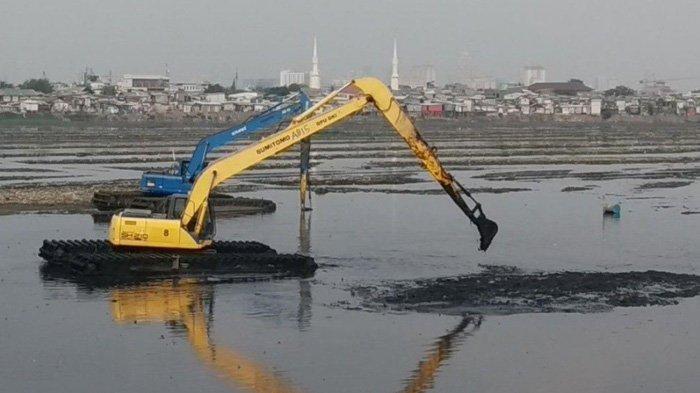 Besok, Kawasan Waduk Pluit Bakal Dibersihkan dari Lumpur dan Sampah