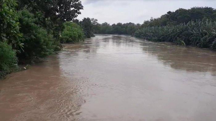 Aliran Kali Bekasi saat tinggi muka air (TMA) sedang meningkat, Sabtu (20/2/2021).