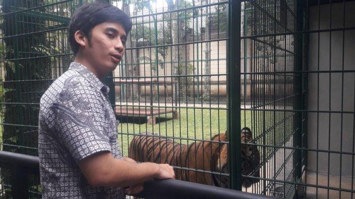 Alshad Bongkar Biaya Makan Harimau Peliharaannya Puluhan Juta Sebulan, Nikita Mirzani Kaget: Wow!