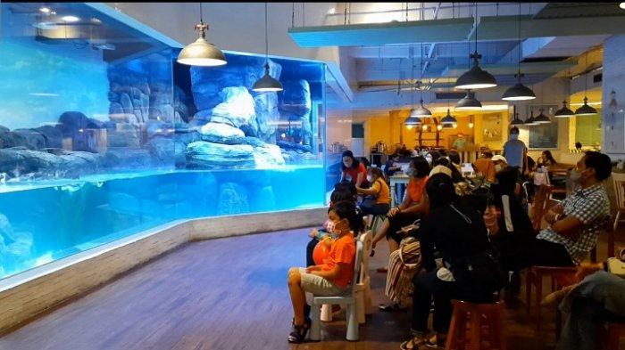 Menikmati Santapan Lezat Sambil Berinteraksi dengan Pinguin, Restoran Ini Tempatnya