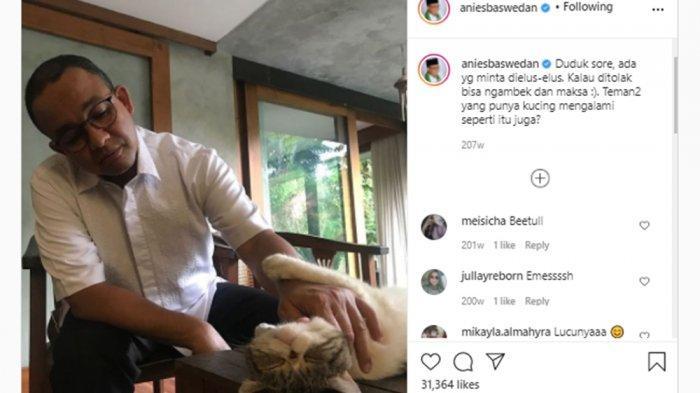 Gubernur DKI Jakarta Anies Baswedan sedang mengelus-ngelus kucing peliharaannya.