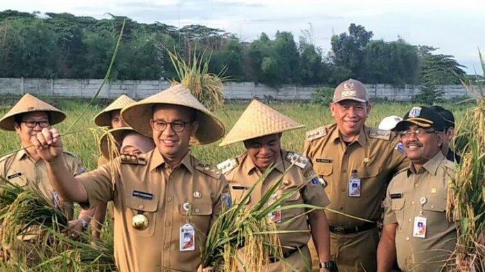 Dua Surat Anies Perjuangkan PenjualanSaham Bir Hingga Sederet Tanggapan Fraksi DPRD DKI Jakarta