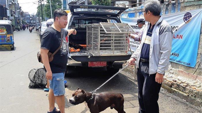Pemilik Anjing Penyerang Satpam di Sawah Besar Ditetapkan sebagai Tersangka