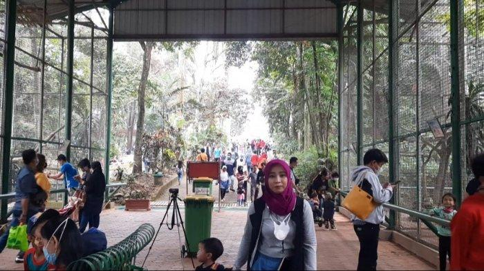 Evaluasi Jumlah Pengunjung Selama Libur Lebaran, Taman Margasatwa Ragunan Tutup Sampai 17 Mei