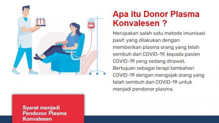 Serba Serbi Donor Plasma Konvalesen, Simak Persyaratan, Alur Donor, Serta Tips Berikut Ini