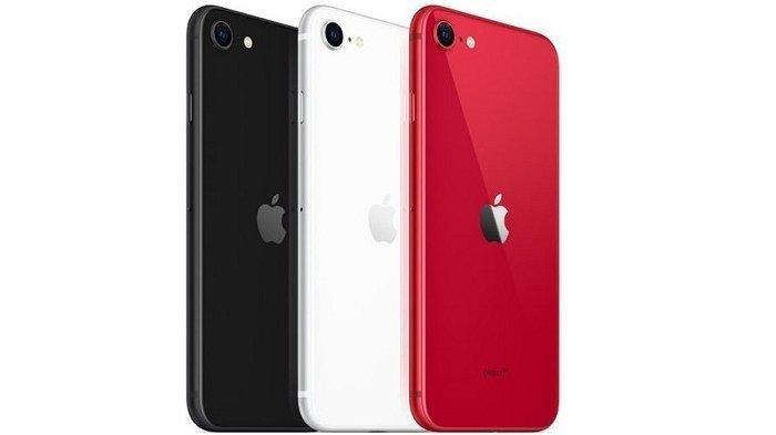 Update Harga iPhone Februari 2021, Rp 12 Jutaan Sudah Bisa Dapatkan iPhone 12