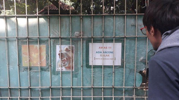 Nyaris 2 Pekan, Saksi Ahli Pidana Kasus ART Digigit Anjing Sprata di Cipayung Belum Datang
