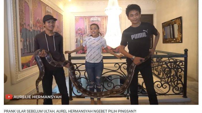 Temukan Ular Besar di Kamarnya, Aurel Hermansyah Teriak Sambil Lari: Sampe Gemeter Kaki Gua