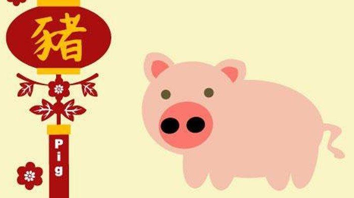 Cek Peruntungan Shio Babi di Tahun Baru Imlek, Jangan Gampang Baper!