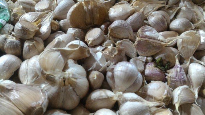 Musim Hujan Rentan Batuk Pilek, Begini Tips Mengatasinya dengan Bawang Putih