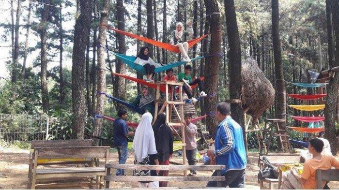 Ingin Nikmati Wisata Alam Bogor di Liburan Tahun Baru 2020? Berikut Rekomendasinya