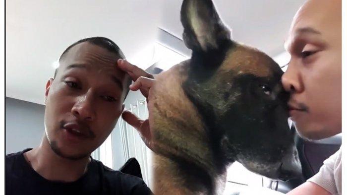 Anjing Kesayangan Mati, Bima Aryo Ungkap Perbedaan saat Usia Sparta 7 Minggu: Bikin Gue Jatuh Cinta