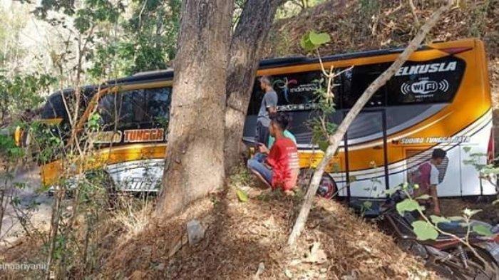 Cerita Bus Sudiro Tungga Jaya Disebut Tersesat & Nyasar di Hutan Karena Hantu, Ini Penjelasan Polisi