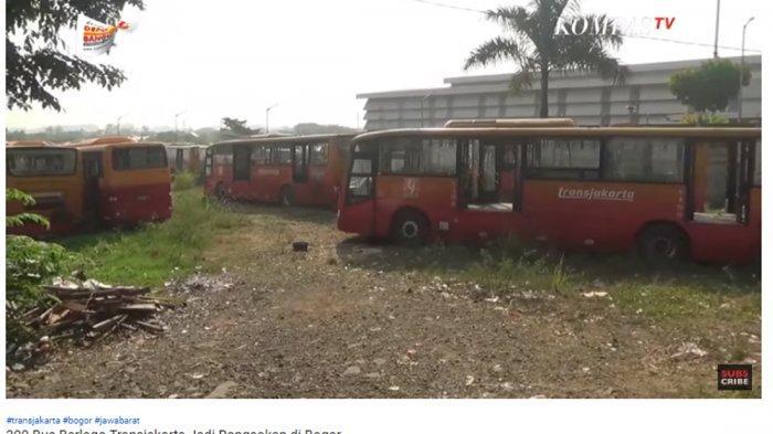 300 Bus Berlogo Transjakarta Terbengkalai di Bogor, Dishub Ungkap Akan Segera Lakukan 2 Hal Ini