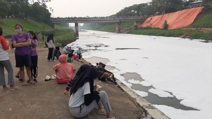Busa Penuhi Kanal Banjir Timur Duren Sawit Jakarta Selama Dua Pekan, Petugas: Sudah Biasa Terjadi