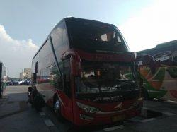 2 PO Bus Ini Siapkan Sederet Fasilitas yang Manjakan Penumpangnya Saat Mudik