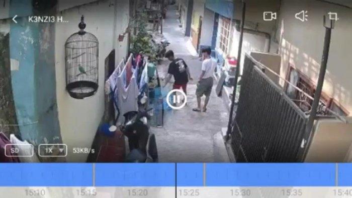 Sedang Dijemur Matahari Depan Gerbang Rumah, 2 Ekor Musang Milik Warga Raib Dibawa Maling