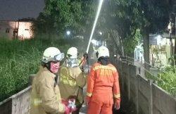 Personel Damkar Jakarta Timur saat proses penyemprotan cairan kimia pembasmi ulat bulu di permukiman warga Duren Sawit, Sabtu (21/11/2020)