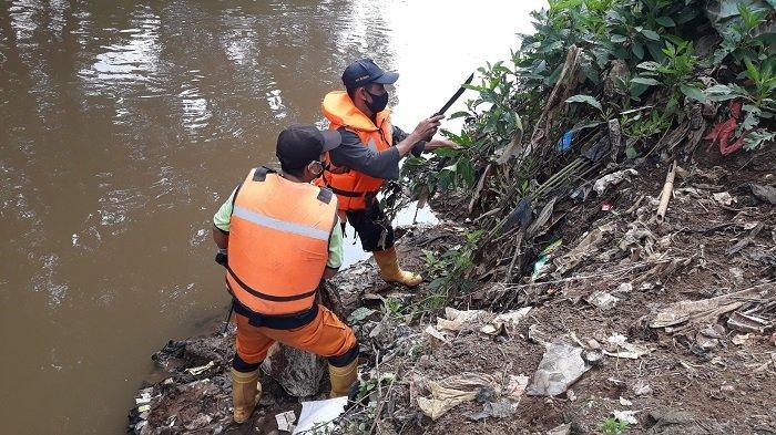 Cerita Pejuang Ciliwung Susur Sungai di Akhir Pekan: Potong Dahan Tumbang