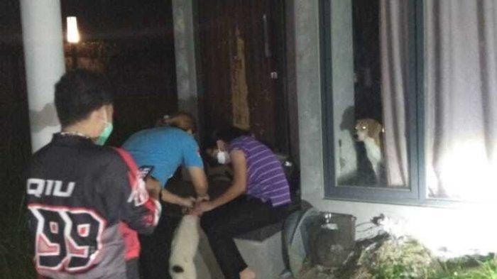4 Anjing Ditelantarkan Di Rumah Kosong Golden Park Serpong, Aktivis Pelindung Hewan Jemput Evakuasi