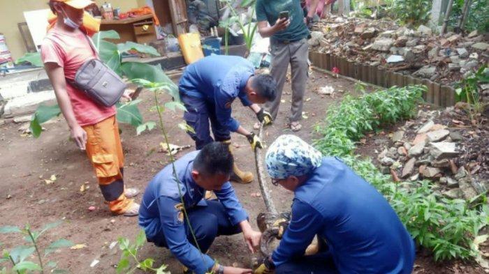 Sepanjang Tahun 2020, Sudin Gulkarmat Jakarta Utara Lakukan 461 Kegiatan Penyelamatan