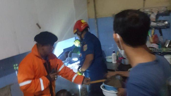 Dalam 1 Pekan, Petugas Damkar Jakarta Timur Terima 6 Laporan Permintaan Evakuasi Ular dari Warga