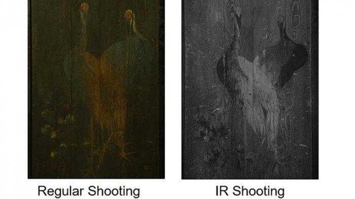 Intip Kecanggihan Fitur Kamera GFX 100 IR, Mirrorless Infrared Pertama