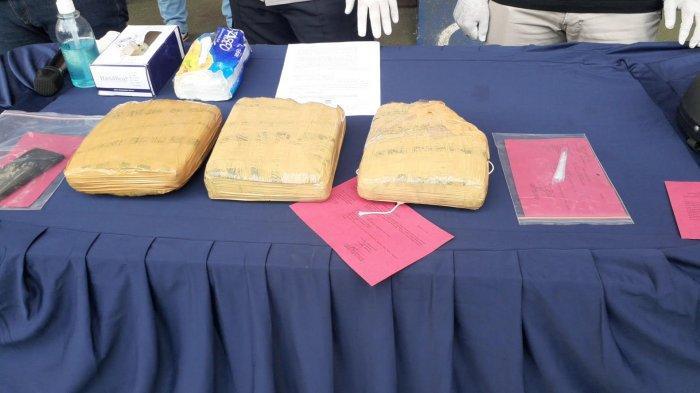 Polsek Serpong Tangkap Mahasiswa Pengedar Narkoba dengan Barang Bukti Ganja 3 Kg