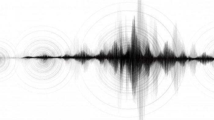 Miyagi Jepang Diguncang Gempa Magnitudo 7,2 Disertai Tsunami