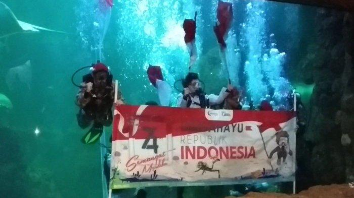 HUT ke-76 RI, Sea World Bakal Gelar Upacara Pengibaran Bendera Merah Putih di YouTube dan Instagram