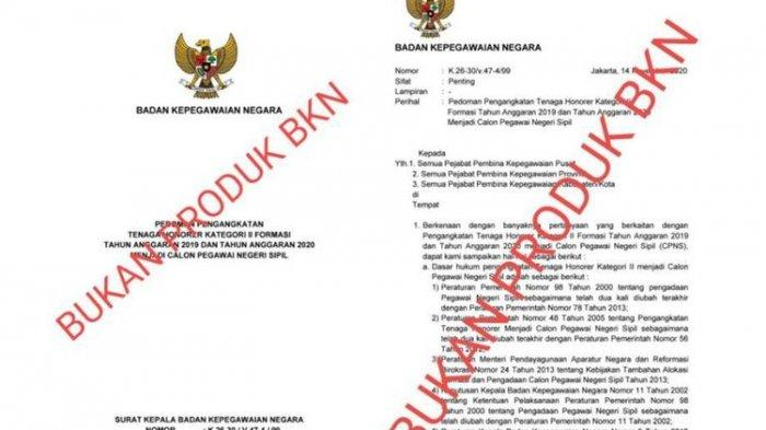 Beredar Info Tenaga Honorer Bakal Diangkat Jadi CPNS, Begini Tanggapan dari BKN