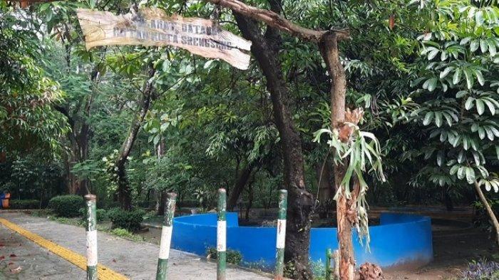 Beragam Aktivitas Seru yang Bisa Dilakukan di Hutan Kota Srengseng Jakarta Barat