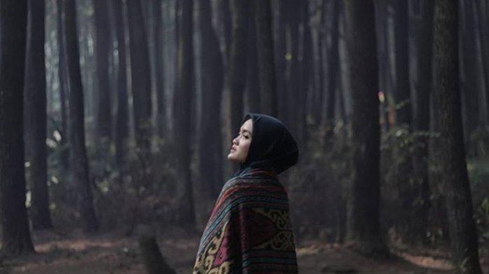 Sederet Kawasan Wisata Hutan Pinus di Bogor, Cocok untuk Refreshing hingga 'Pamer' di Medsos