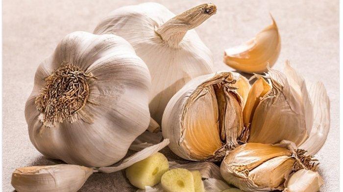 Catat 9 Manfaat Makan Bawang Putih Mentah, Bisa Turunkan Kolesterol hingga Perkuat Tulang