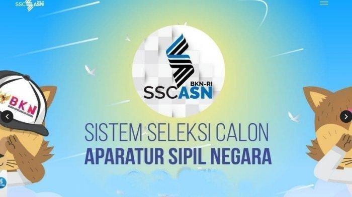 Seleksi CPNS dan PPPK di sscasn.bkn.go.id Berakhir, Simak Pengumuman Hasil Seleksi Administrasi