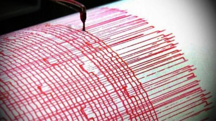 Gempa Magnitudo 6,5 Guncang Kabupaten Touna Sulteng, Listrik Seketika Padam, Warga Panik Berhamburan