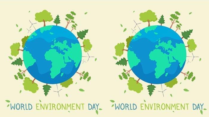 Peringati Hari Lingkungan Hidup Sedunia 2021, Yuk Jangan Buang Langsung Kemasan Karton Bekas