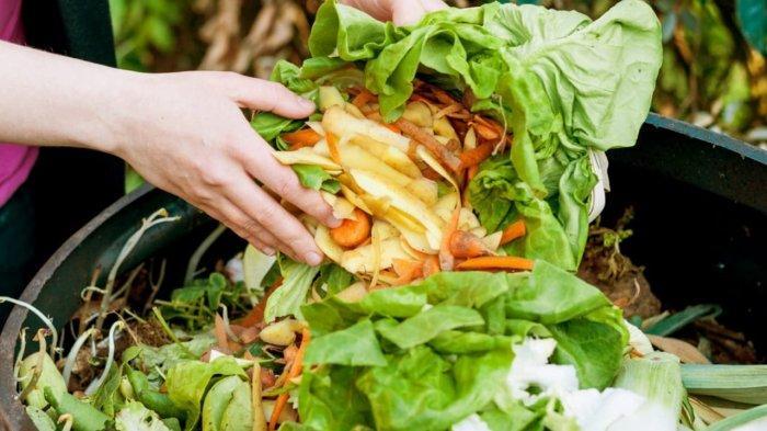 Ketahanan Pangan Dapat Terancam, Kurangi Limbah Makanan dengan Mengolah Sisa Makanan di Dapur