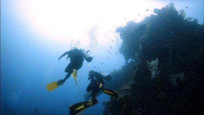 Mencari Destinasi Wisata Bawah Laut Terindah di Indonesia Jadi Lebih Mudah, Intip Blublub Sekarang